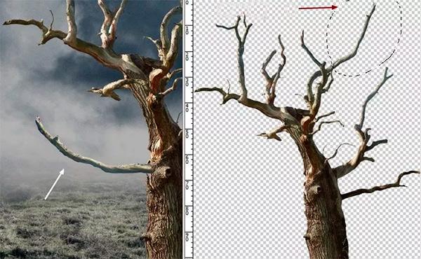 Иллюстрация дерева с лунами 15