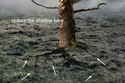 Иллюстрация дерева с лунами 19