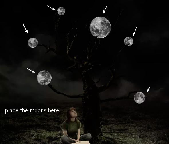 Иллюстрация дерева с лунами 40