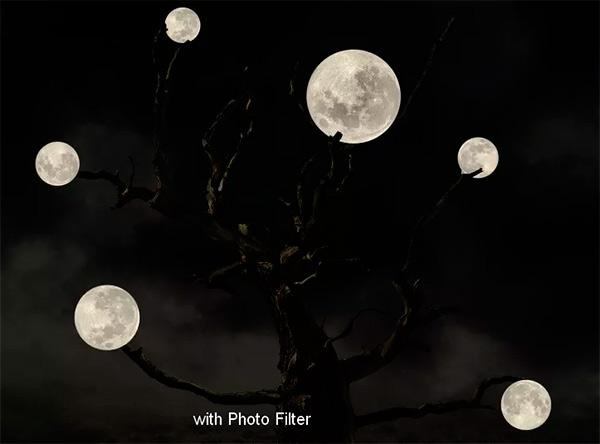 Иллюстрация дерева с лунами 44