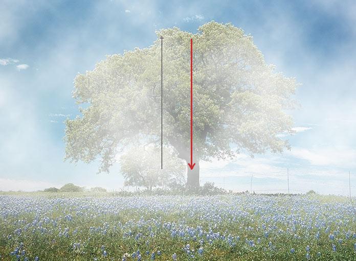 Как сделать туман в Фотошопе