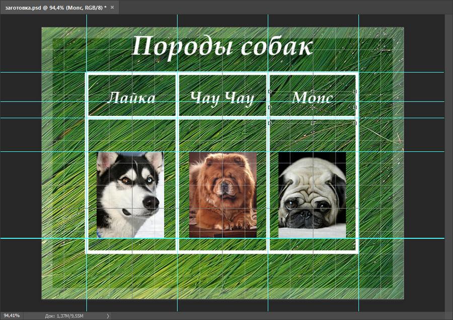таблица с направляющими и картинками в фотошопе