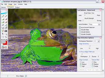 Плагин Vertus Fluid Mask 2.0.3 1