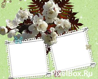 Рамка для фотографии - Природа 1