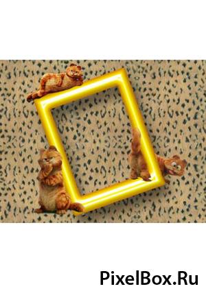 Рамка для фотографии - Кот Garfild 1
