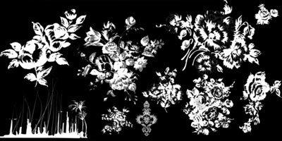 Кисти цветки для фотошопа 2