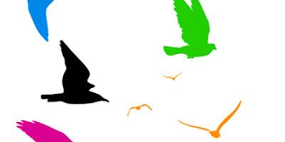 Фигуры птиц для фотошопа