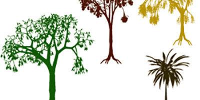 Фигуры деревьев для фотошопа