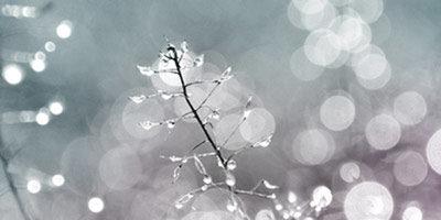 Пузырчатые кисти для фотошопа