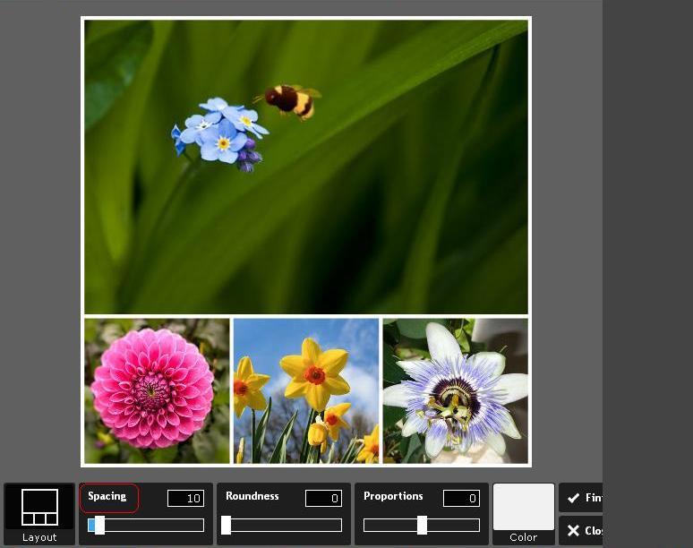 фотоколлаж с пчелкой