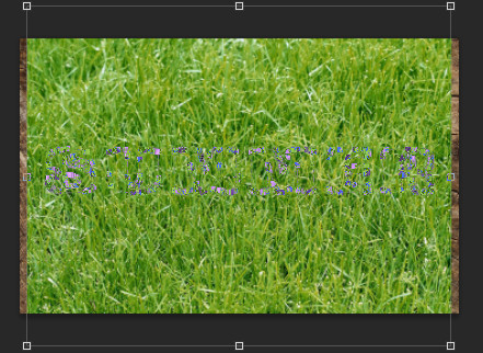 трава в фотошопе