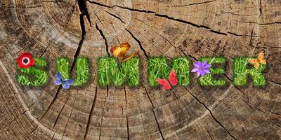 Создаем красивый текст из травы в фотошопе