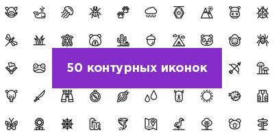 50-ikonok-animals-nasekomie-pre