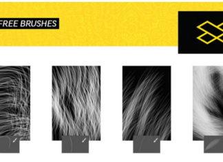 Набор кистей «Волосок к волоску»