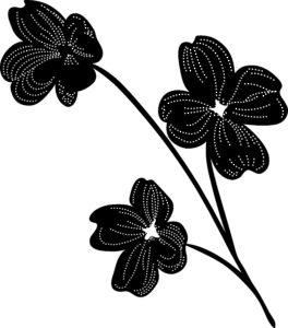 Клипарт «Чёрно-белые цветы»