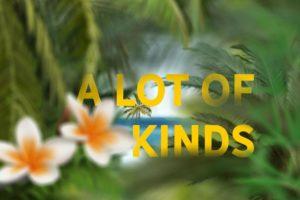 Набор оверлеев «Тропические растения»
