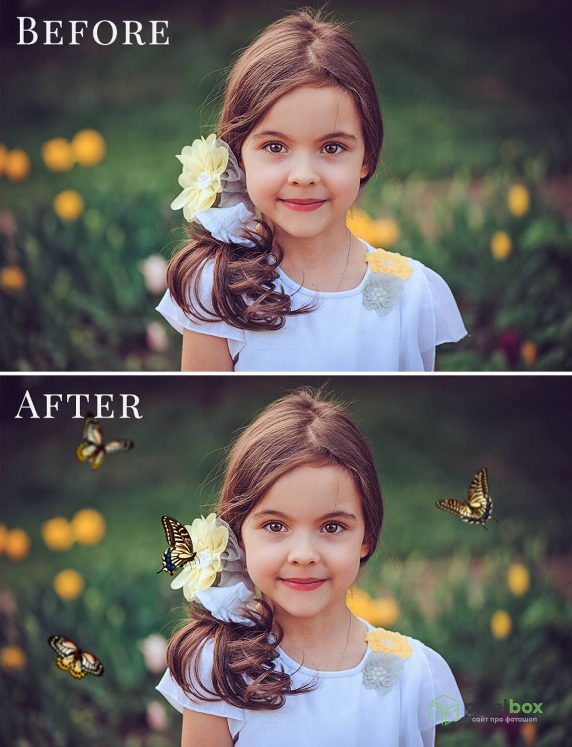 Набор оверлеев «Бабочки»