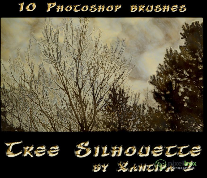 5 наборов кистей Photoshop реалистичных деревьев