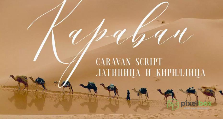 Полезные и красивые каллиграфические шрифты