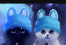 100 аватарок котиков для Vkontakte