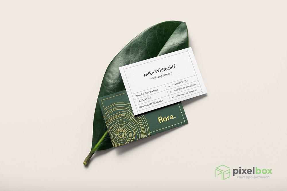 PSD-шаблоны визиток